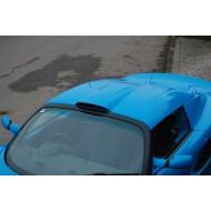 Lotus Elise/V6 Exige Big Vent hardtop